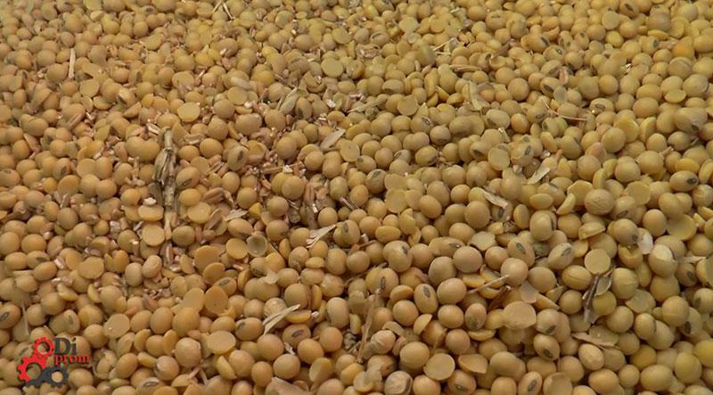 Как выбрать очиститель зерна (фото после очистки)